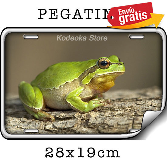 STICKER PEGATINA RANA VERDE TROPICAL SELVA